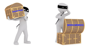 domain thieves